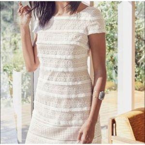 ELIZA J Lace Fringe Shift Dress Ivory SZ 8